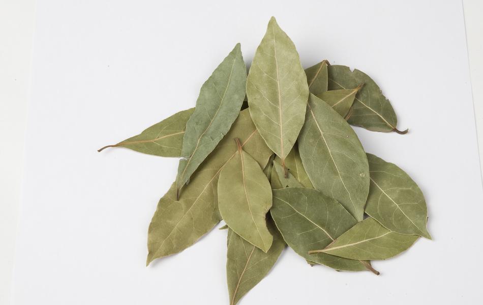 Como usar las hojas de laurel
