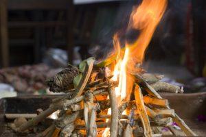 8 Aromas que Alejarán los Mosquitos de tu Hogar, por Fin: ¡Te quedarás sorprendida de lo rápido que sucede!