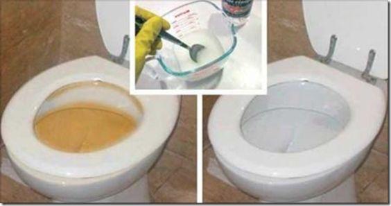 Cómo limpiar el Baño Rápidamente (2)